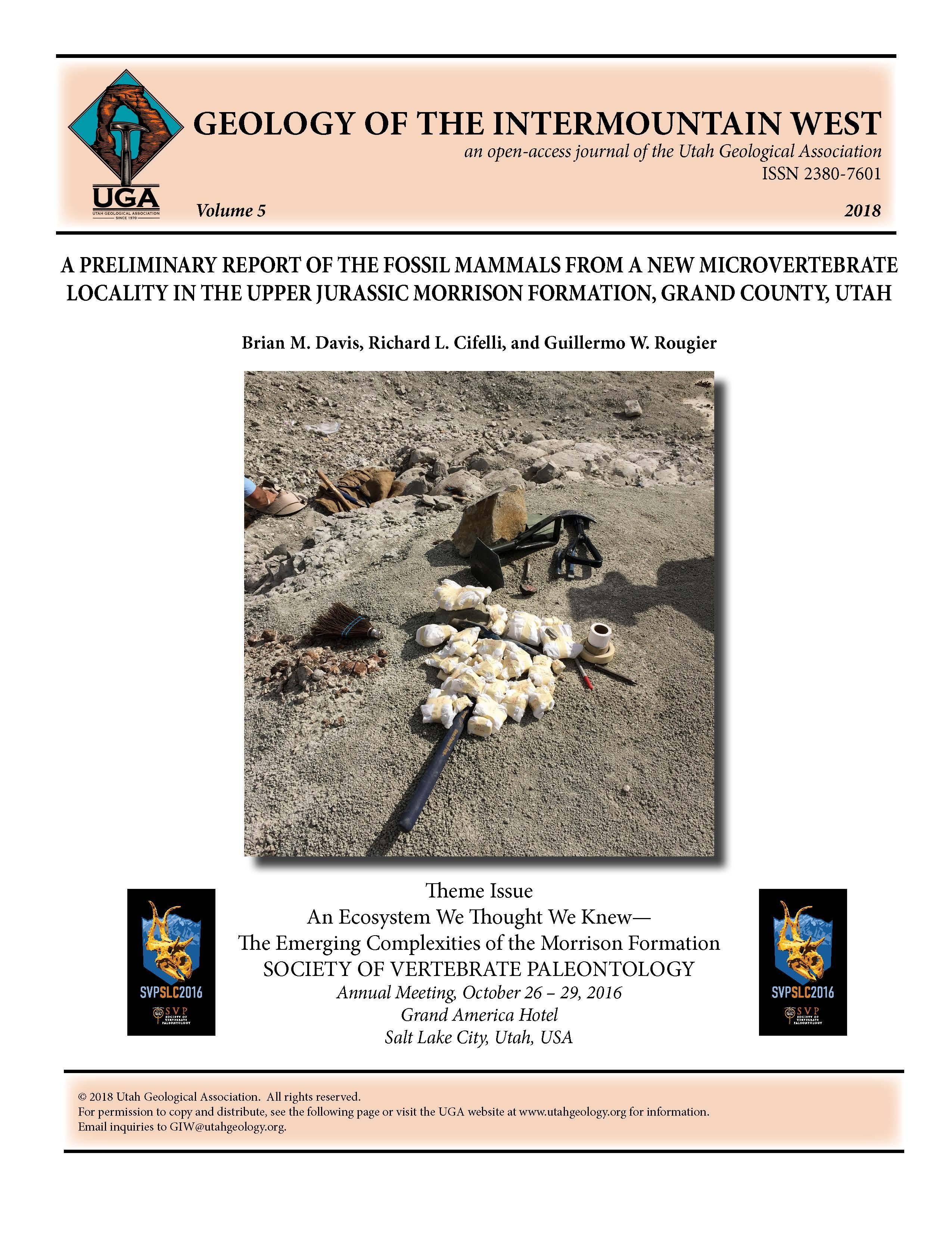 Small vertebrate fossils wrapped for transport, Cisco Mammal Quarry, Upper Jurassic Morrison Formation, Grand County, Utah.
