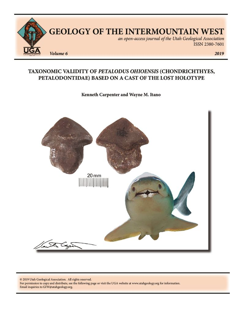 Two views of a cast of the long-lost holotype of Petalodus ohioensis Safford, 1853 and hypothetic restoration of the shark. The cast resolves the long historical debate about the validity of this ancient shark tooth species.